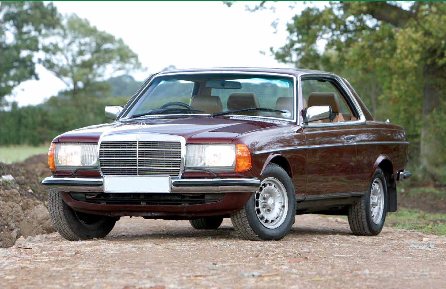 Mercedes-Benz 230E - Classic Car Buyers Guides :: Quote My